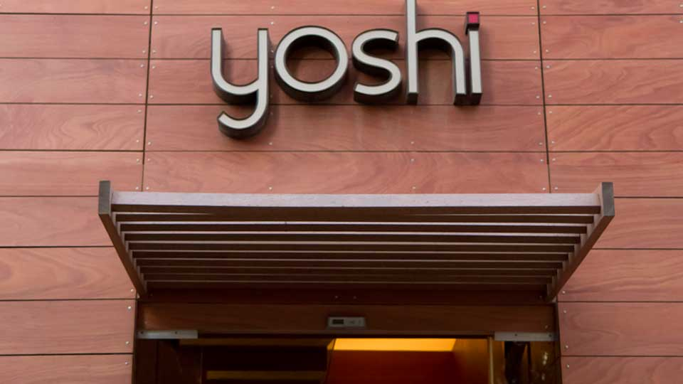 yoshi-about